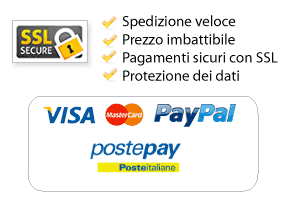 paga con carta di credito in sicurezza